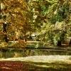 jesień nad Starym Kanałem<br /> Bydgoskim