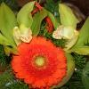 Dla naszego mistrza świat<br />a Michała Kwiatkowskiego <br />- Kwiatku jesteś wielki